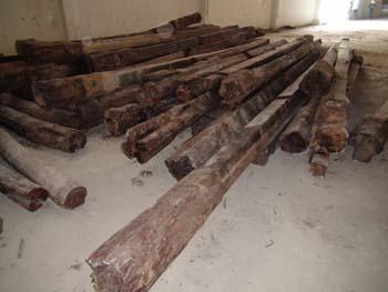 บุกยึดไม้พะยุงมูลค่ากว่า 100 ล้าน